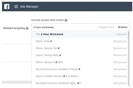 AdSight Pro review - Image shows the limited targeting options Facebook gives it's advertisers