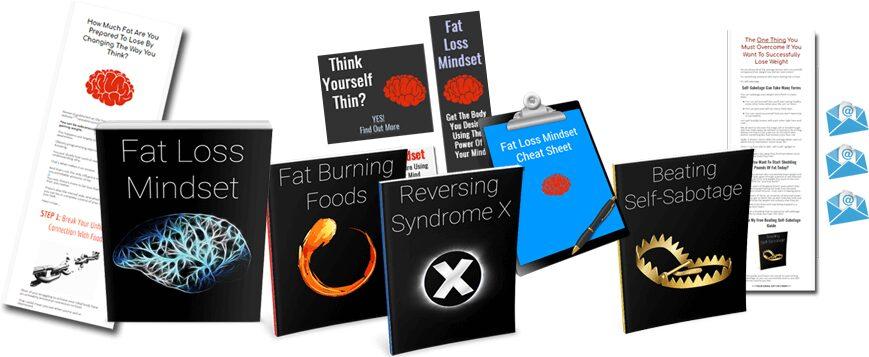 Fat Loss Mindset PLR Review - Premium PLR With Huge Bonus